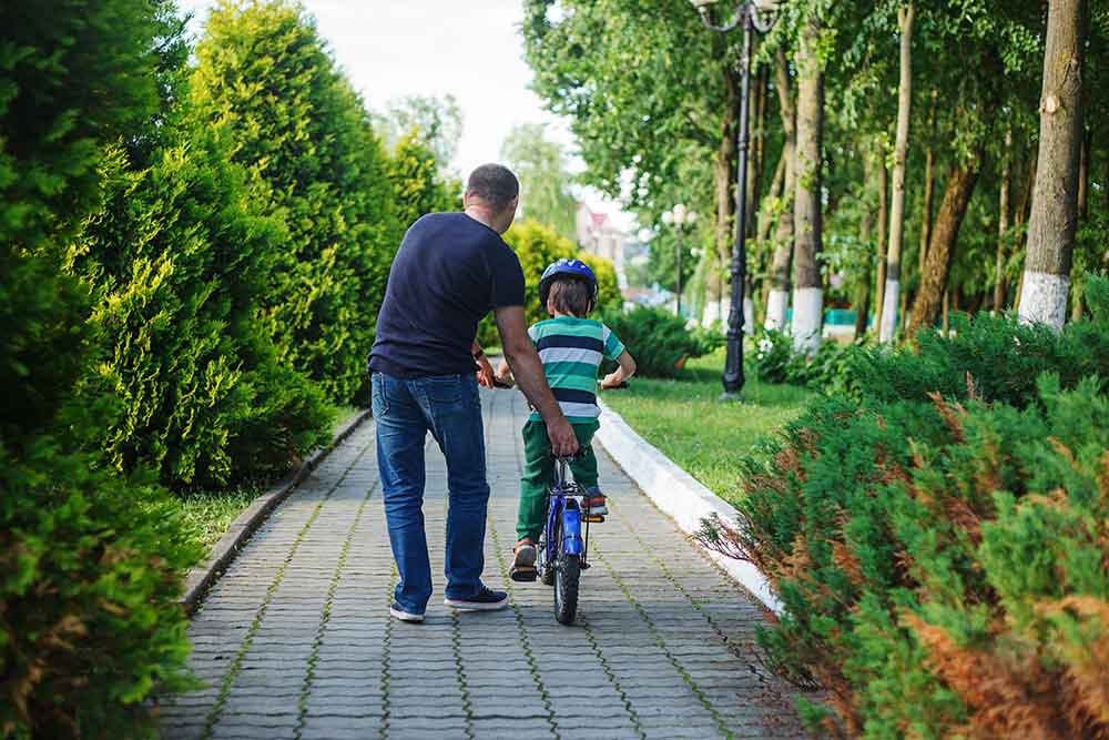 Establishment of paternity